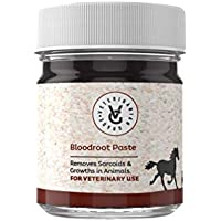 Veterinarian Grade Bloodroot Paste for The Removal of Sarcoidosis & Tumorous Growths in Horses, Dogs and Livestock (1oz)