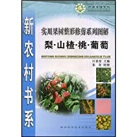 utility tree pruning and line diagram: Grape Peach Pear Hawthorn(Chinese Edition)
