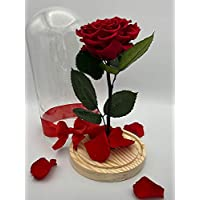 Forever Rose/Long Lasting Rose/Preserved Rose in a Glass (Handmade/100% Real) Beauty and the Beast. Unique Gift for Mother's Day/Birthday/Anniversary/Valentine's/Proposal/Get Better (RED, LARGE)