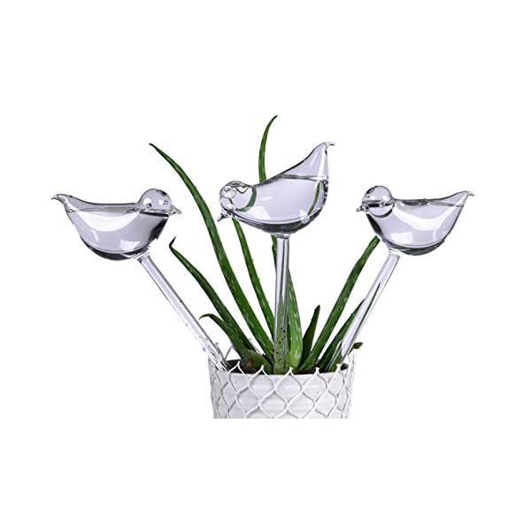 Automatic Hand-Blown Glass Watering Bulbs Plant Waterer Self Watering Globes Beetle Shape Hand Blown Mini Durable Clear Glass Water Globes