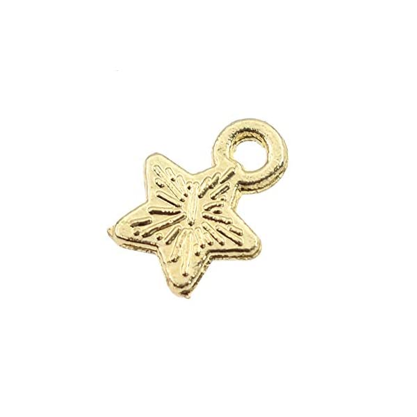 Youkwer 50 pcs 11 mm x9 mm Polished Surface Star Shape Charm pendant for DIY Crafting and jewelry Making Findings Accessories (Gold)