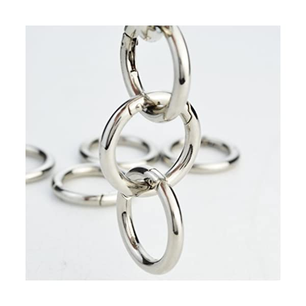 Silver baotongle 10 Pcs Zinc Alloy Round Carabiner Spring Snap Clips Ring Buckle Locking Carabiners Trigger Spring Keyring Buckle for Bags Keychain Purses