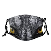 SKAERGI Dangerous Mammal Eyes of Wild Wolf Aggressive Predator Carnivore Image Dust Washable Reusable Filter and Reusable Mouth Warm Windproof Cotton Face