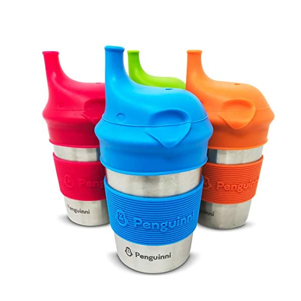 8oz Punch Stainless Steel Spill-Proof Sippy Cup with Silicone Lid and Grip Sleeve