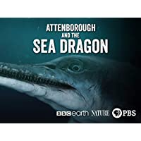 Nature: Attenborough & The Sea Dragon