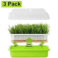 Homend Seed Sprouter Tray with Lid, Seed Germination Tray BPA Free Nursery Tray for Seedling Planting Great for Garden Home Office (3)