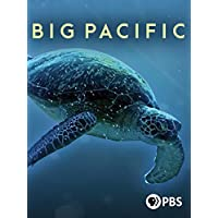 Big Pacific Season 1