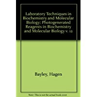 Photogenerated Reagents in Biochemistry and Molecular Biology (Laboratory Techniques in Biochemistry & Molecular Biology) (v. 12)