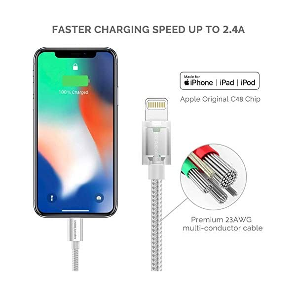 Apple MFi Certified 2Pack 3M iPhone Charger Cable CABEPOW Long Lightning Cable 3M,High Fast 10ft iPhone Charging Cable Lead with Metal Connector for iPhone 11//11Pro//11Max//XS//XR//XS Max//8//7//6//5S//SE