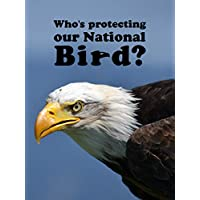 Who's Protecting Our National Bird?