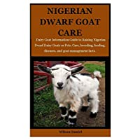 Nigerian Dwarf Goats Care: Dairy Goat Information Guide to Raising Nigerian Dwarf Dairy Goats as Pets. Care, breeding, feeding, diseases and goat management facts.
