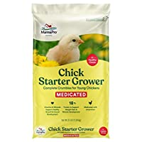 Manna Pro Chick Starter | Medicated Chick feed formulated with Amprolium | Prevents Coccidiosis | Feed Crumbles | 25 Pounds