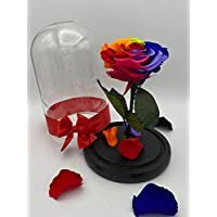 Forever Rose/Long Lasting Rose/Preserved Rose in a Glass (Handmade/100% Real) Beauty and the Beast. Unique Gift for Mother's Day/Birthday/Anniversary/Valentine's/Proposal/Get Better (RAINBOW, SMALL)
