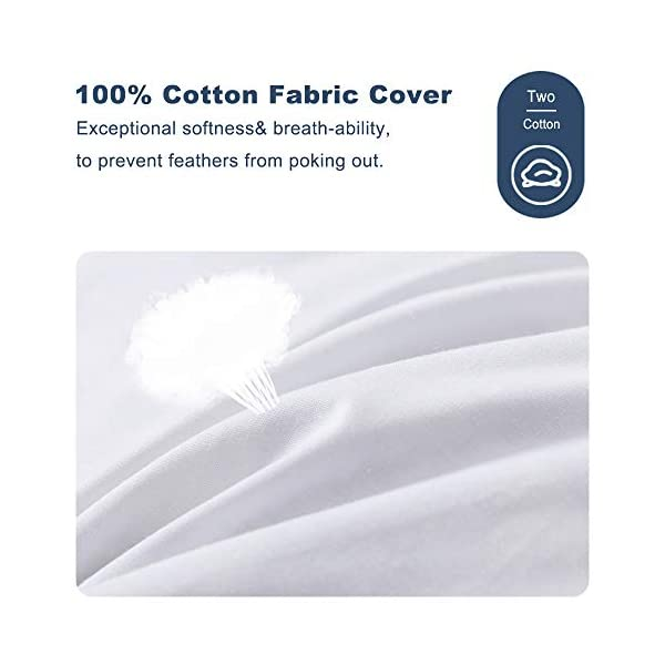 DOWNCOOL 100/% White Cotton Stuffer Throw Pillow Insert Rectangle Down and Feather Filled Decorative Bed Sofa Insert Lambar 12x24 Inch