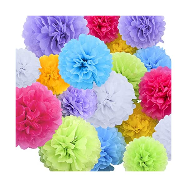 14 Inch 12 Livder Paper Pom Poms Bright Colorful Tissue Paper Flowers for Party Birthday Wedding Christmas Festive Decorations 15 Pieces of 10
