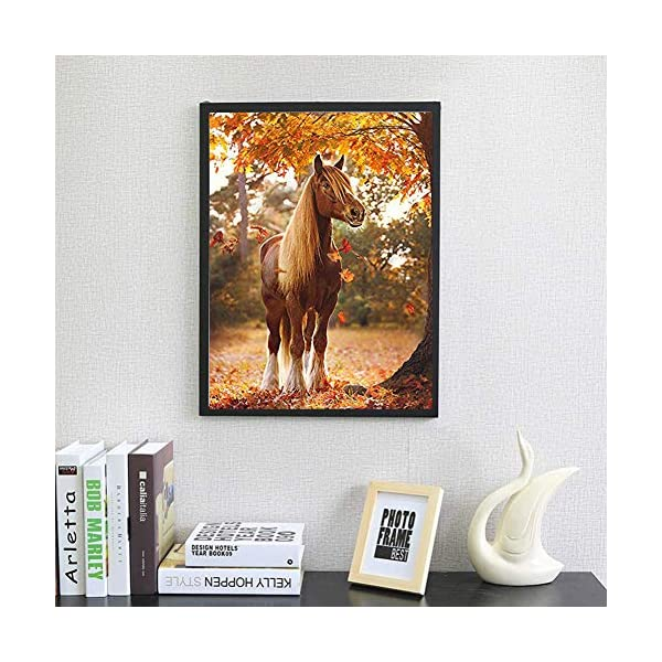 DIY 5D Diamond Painting by Number Kits for Adults,Diamond Embroidery Painting Kits Art Craft Home Wall Decor Animals Horse 11.8x15.7in 1 by Lighting S Direct
