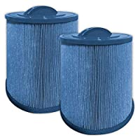 Guardian Filtration Products GAURDIAN Antimicrobial Pool/SPA 2 Pack Filters fit: Pleatco:PAS50SV-F2M, Unicel: 6CH-502, Filbur: FC-031 Artesian spas, Majestic Antibacterial, MICROBAN