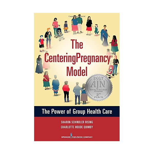 The CenteringPregnancy Model: The Power of Group Health Care                         (Paperback)