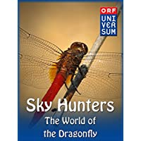 Sky Hunters - The World of the Dragonfly