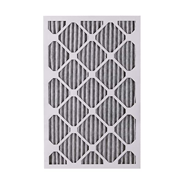 Nordic Pure 20x25x1 MERV 10 Pleated Plus Carbon AC Furnace Air Filters 20x25x1PM10C 6 Piece
