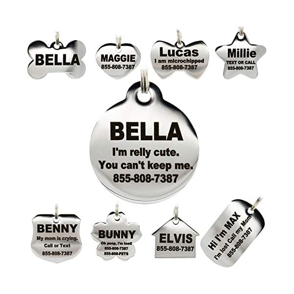 Adjustable Reflective Personalized Dog Collar Engraved Round Dog Name ID Tag