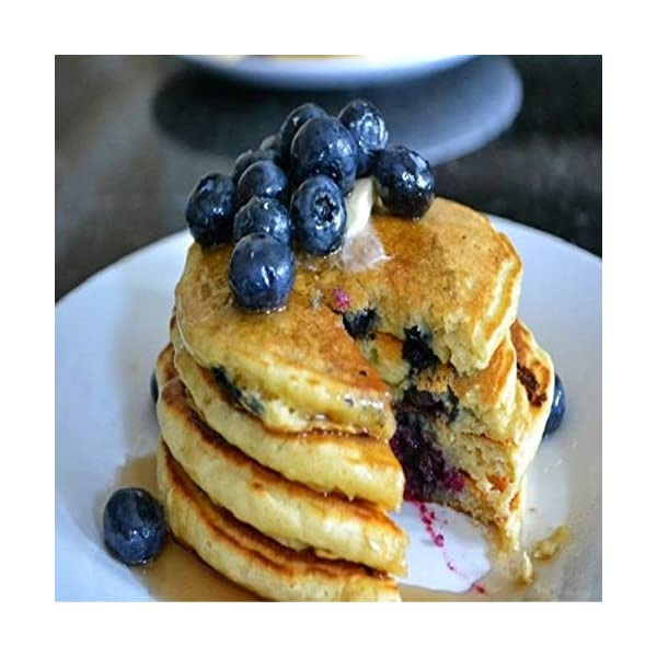 FREE S/&H IN USA BLUEBERRY PANCAKES FRAGRANCE OIL FOR CANDLE /& SOAP MAKING BY VIRGINIA CANDLE SUPPLY 1 OZ