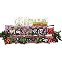 Medicinal & Herbal Tea Garden Seed Collection - Premium Assortment - 18 Non-GMO Herb Seed Packets: Angelica, Borage, Cayenne, Burdock, Lavender, Peppermint, More