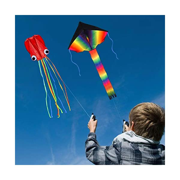 Great Gift to Kids Childhood Precious Memories SINGARE Large Rainbow Delta and Butterfly Kites 2 Pack Easy Flyer Kites with Long Colorful Tail for Kids Adults Outdoor Game Activities Beach Trip