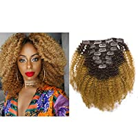 Lacerhair 4A 4B Big Afro Kinky Curly Ombre Hair Extensions Clip in Double Weft Remy Human Hair for Black Women Two Tone Clip in Curly Hair,Off Black Fading into Blonde Strawberry #1B/27, 10 Inch