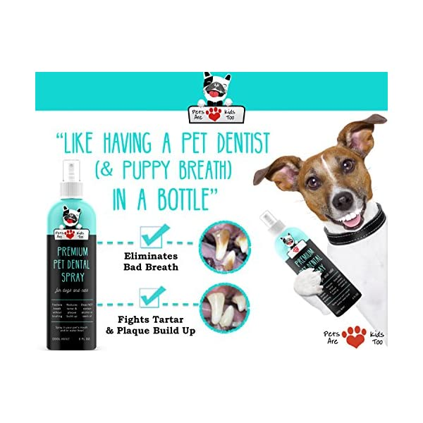 Pets Are Kids Too Premium Pet Dental Spray (Large - 8oz): Eliminate Bad Dog Breath & Bad Cat Breath! Naturally Fights Plaque, Tartar & Gum Disease Without Brushing! Add to Water! Digestive Aid!