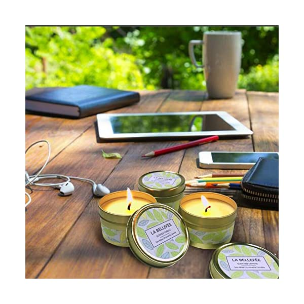 Outdoor and Indoor 6-Packs 15 Hour Burn LA BELLEF/ÉE Citronella Candles 2.5oz Natural Scented Soy Wax Portable Travel Tin Candle Set