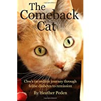 The Comeback Cat: Cleo's incredible journey through feline diabetes to remission