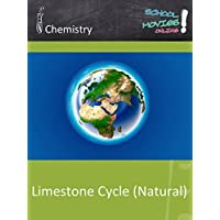 Limestone Cycle (Natural) - School Movie on Chemistry