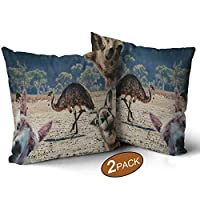 Nine City Collage of Animals Living in Australia emu,Throw Pillow Cushion Covers Pack of 2 Koala Sofa Bed Throw Cushion Cover Decoration 17