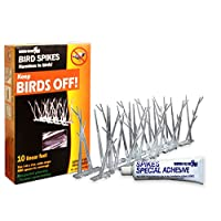 Bird-X, SP-10-NR Plastic Polycarbonate Bird Spikes Kit with Adhesive Glue, Covers 10 feet