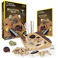 NATIONAL GEOGRAPHIC Mega Fossil Dig Kit – Excavate 15 real fossils including Dinosaur Bones, Mosasaur & Shark Teeth - Great STEM Science gift for Paleontology and Archeology enthusiasts of any age