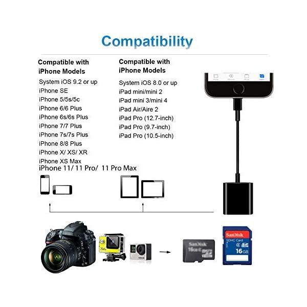 Upgraded-Support iOS 9.2 or up GOLDFOX SD Card Camera Reader for iPhone iPad No App Needed Trail Game Camera Card Viewer Reader for iPhone 6//6s//6s Plus//5//5s//7//7 Plus//8//8 Plus//X//iPad Mini//Air//Pro