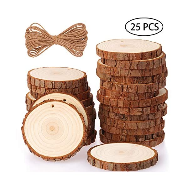 CEWOR 40pcs 3.5 Inches 4 Inches Unfinished Natural Wood Slices with Tree Bark Log Discs Great for Arts and Crafts