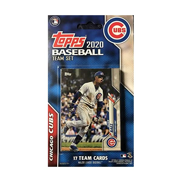 Atlanta Braves 2019 Topps Baseball Factory Sealed Special Edition 17 Card Team Set with Ronald Acuna Jr and Ozzie Albies Plus