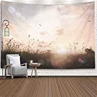 Bisead Colorful Tapestry for Women Calm Concept Vintage Style Abstract Beautiful Meadow Landscape Autumn Sunset Background 80X60 Inches Art Tapestry for Bedroom