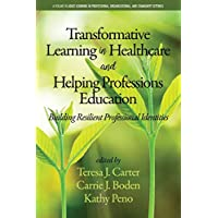 Transformative Learning in Healthcare and Helping Professions Education: Building Resilient Professional Identities (Adult Learning in Professional, Organizational, and Community Settings)