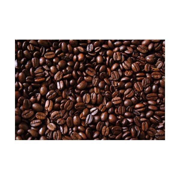 Kenya AA+ Karundul Coffee Beans Finest Auction Lot, 9 Pounds Green Beans Unroasted Fine International Coffees up to 50 Pounds