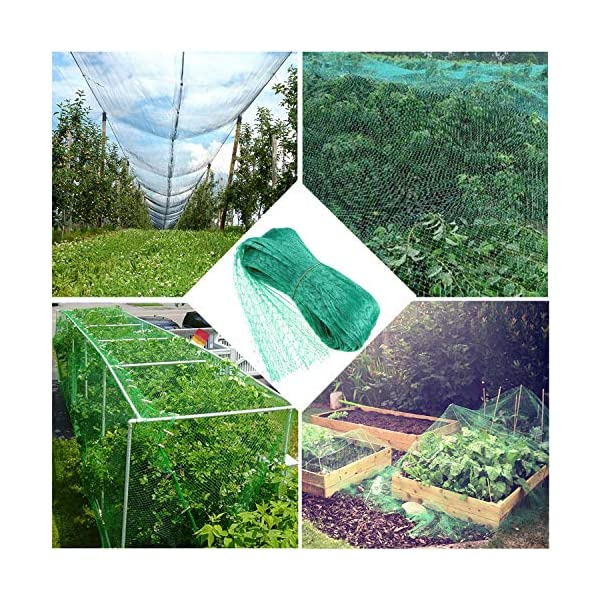 4 M x 10 M Anti Bird Protection Net Garden Plant Mesh Netting Fruit Trees Netting with Cable Ties and U-Shaped Garden Pegs Green