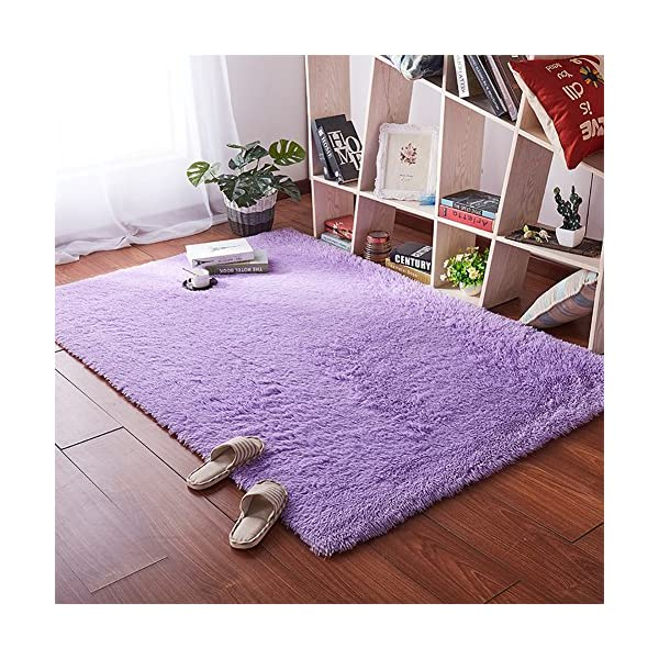 Softlife Fluffy Area Rugs For Bedroom