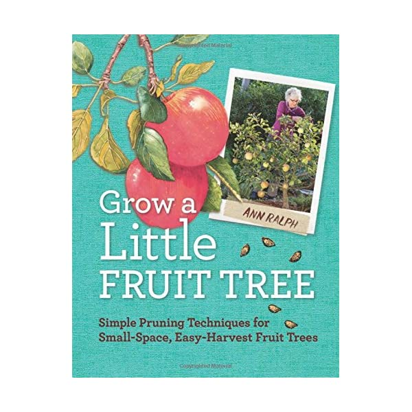 Grow a Little Fruit Tree: Simple Pruning Techniques for Small-Space, Easy-Harvest Fruit Trees                         (Paperback)