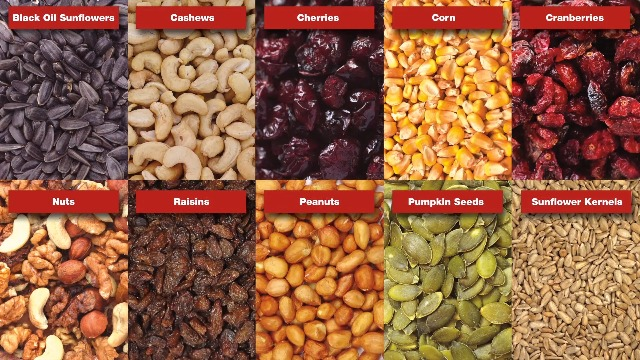 Red River Commodities 389 8Lb Backyard Buffet Seed