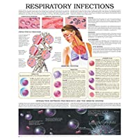 Respiratory infections e chart: Full illustrated